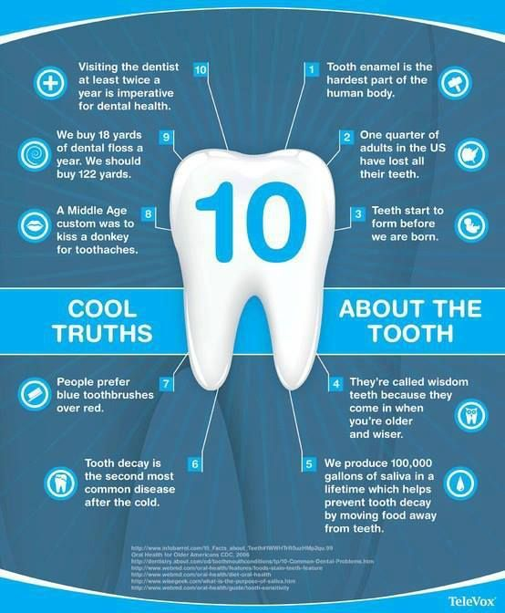 Interesting Facts about human teeth