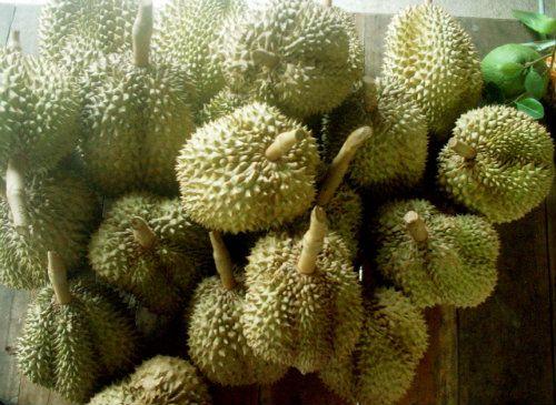 Chanthaburi Fruit Festival