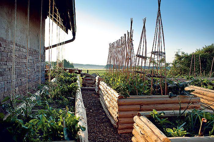 Za zadným traktom domu, oproti zimnej záhrade sú vyvýšené zeleninové záhony – pestovanie v nich sa osvedčilo ako pohodlné aj výnosné.