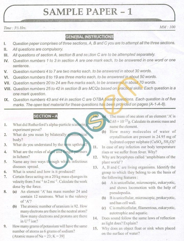 13 best question paper images on Pinterest Sample paper - sample paper