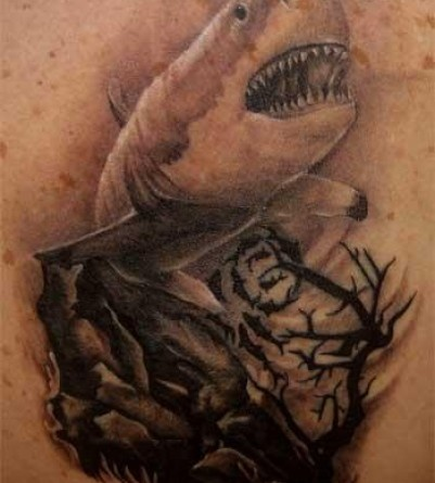 Shark Tattoos. this is how detailed i want my tiger shark tattoo to be