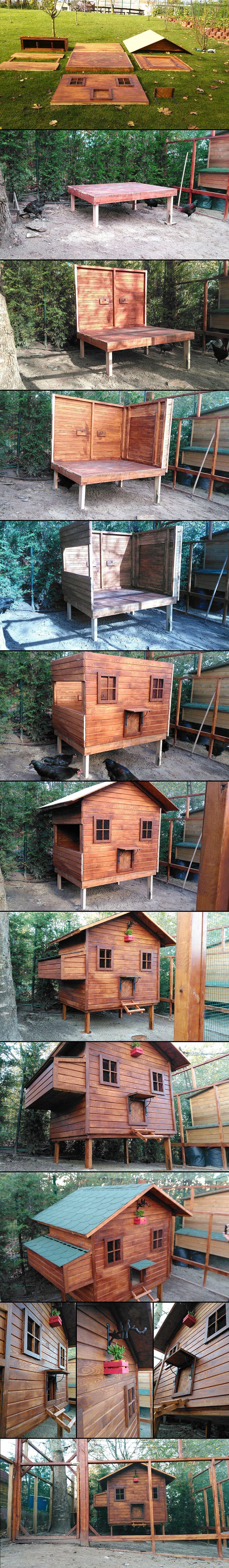 Kümes Yapımı, Chicken Coop