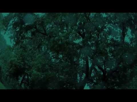 Rain Wind Thunder Sounds - Incredible - YouTube