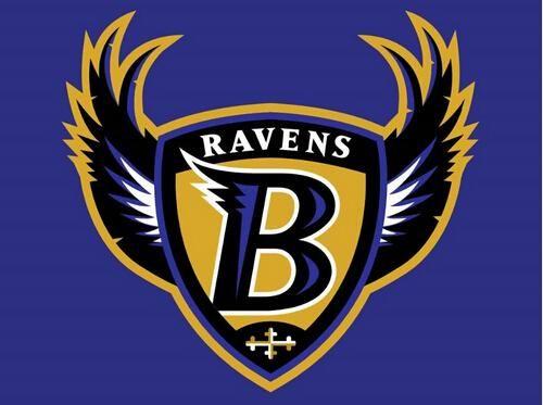 The New Baltimore Ravens flag 3ftx5ft Banner 100D Polyester Flag whit 2 metal Grommets