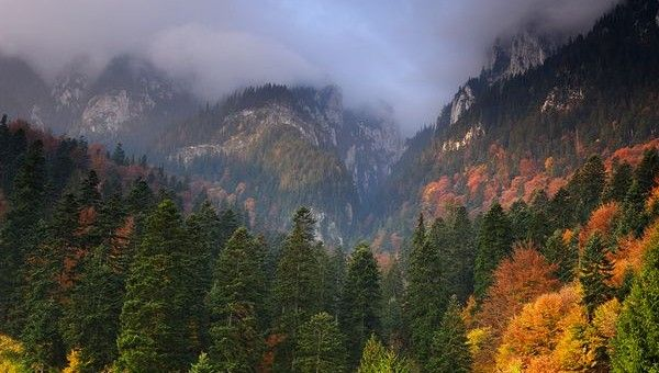 Cheile Bicazului si Piatra Craiului, in National Geographic | iVisit.ro