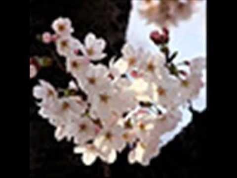 谷村新司 - 花(HANAはな) - https://www.youtube.com/watch?v=957aZltwSpE