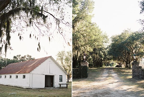 Allison and Rob. Pheasant shoot #wedding welcoming party, Coosaw Plantation, Seabrook, #SouthCarolina. #weddingphotography #weddingphotographer