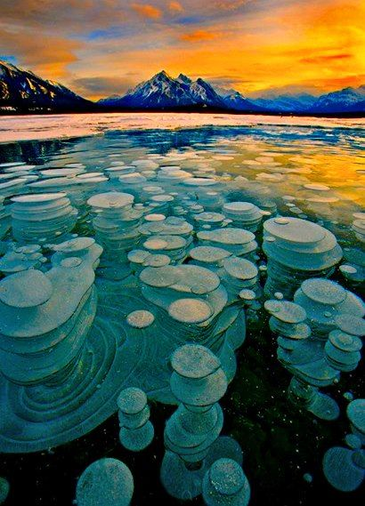 Frozen Bubbles, Abraham Lake, Alberta, Canada Bubbles trapped and frozen under a thick layer of ice creating a glass type feel to the frozen lake. Gorgeous.