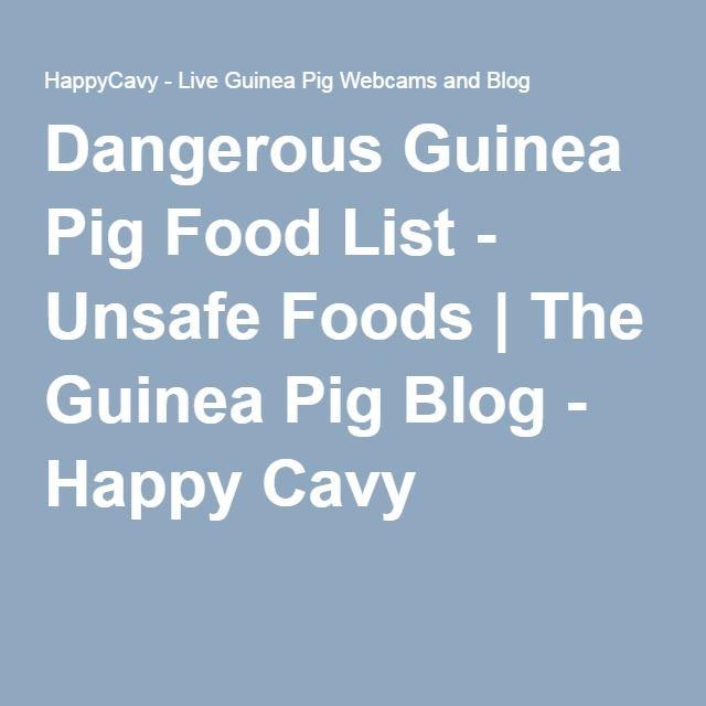 Dangerous Guinea Pig Food List - Unsafe Foods | The Guinea Pig Blog - Happy Cavy