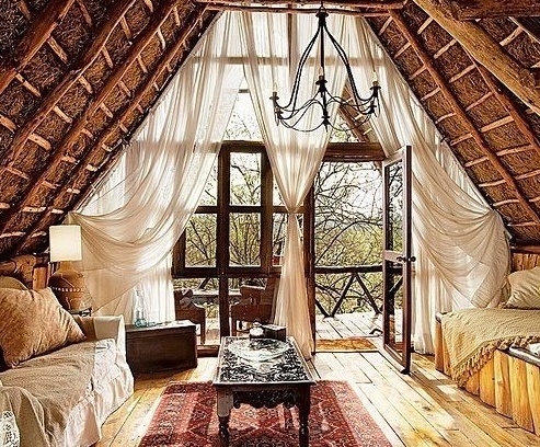Pinterest - Treehouse masters interior ...