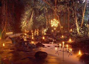 Flames of the Forest - dinner in the rain forest outside of Port Douglas/Cairns, Australia