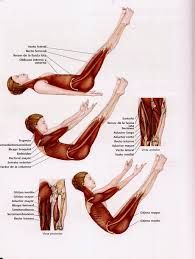 Pilates workout on pinterest pain d epices stretching and scapula