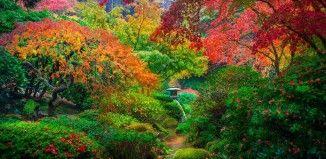 Un jardín japonés de Portland, Estados Unidos