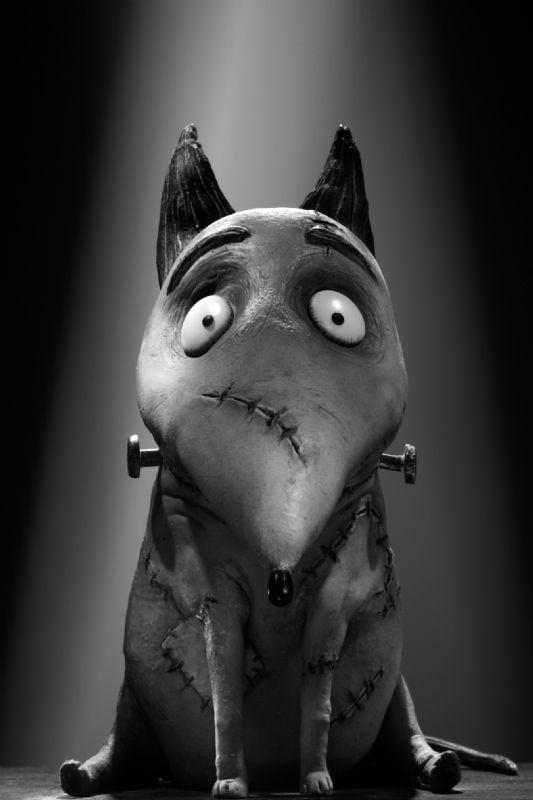 """Sparky - from """"Frankenweenie""""  © Tim Burton"""