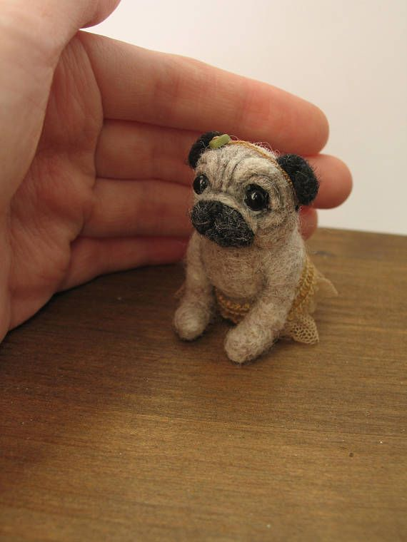 Small Toy Pugs : Best toy pug ideas on pinterest puppies pugs