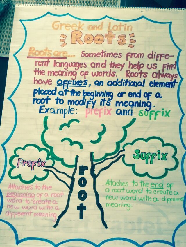 Greek and Latin Roots Anchor Chart