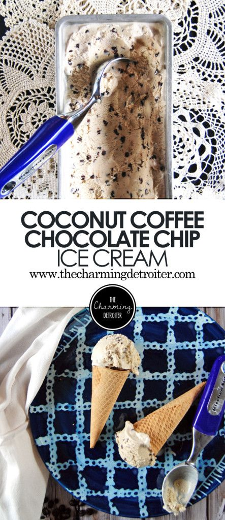 Coconut Chocolate Chip Coffee Ice Cream: Coffee ice cream is made even tastier with the addition of mini chocolate chips and coconut!