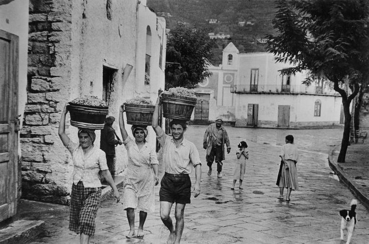 Henri Cartier-Bresson | Καμπανία, 1952. Σε μια ρώγα από σταφύλι έπεσαν όλες οι μνήμες... Ιστορικές φωτογραφίες από τρύγο
