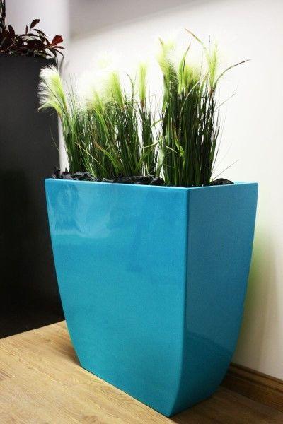36 best Office plants images on Pinterest Office plants