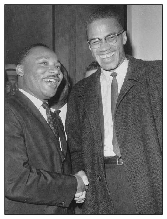 Martin Luther King And Malcom X Compare And Contrast Essays