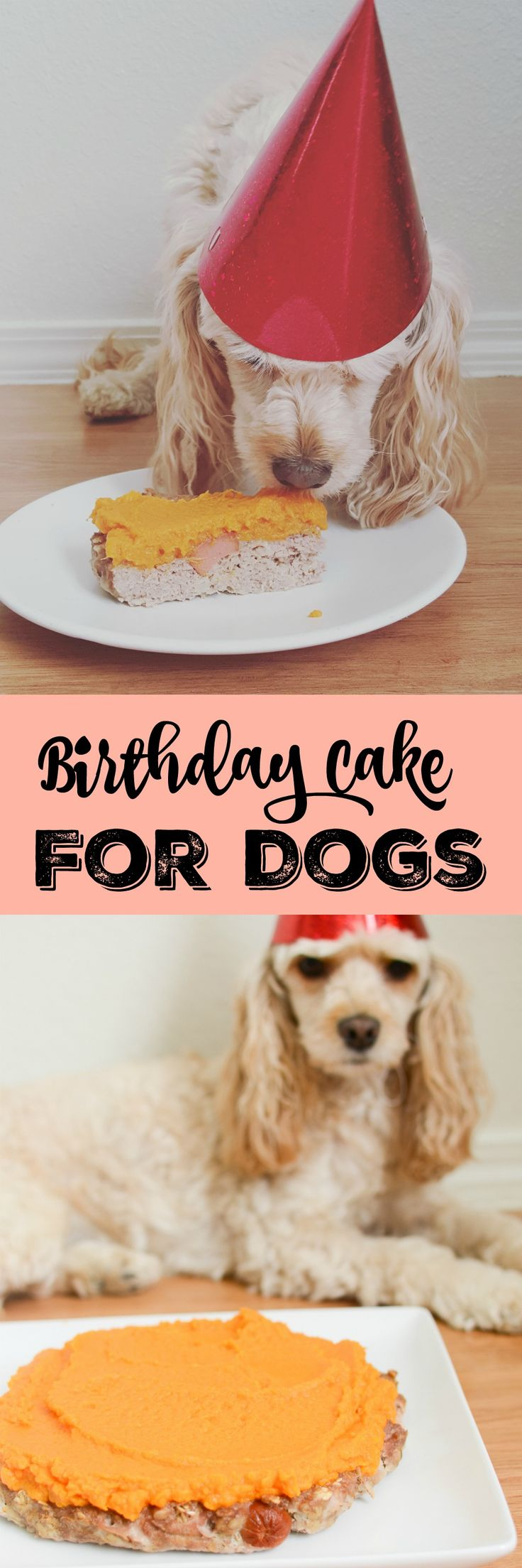 Birthday Cake for Dogs - homemade chicken cake for your pup's birthday! With…