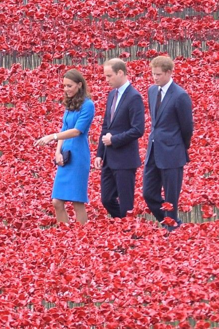 8/5/14.  Kate Middleton, Prince William And Prince Harry Visit The Spectacular Sea Of Poppies