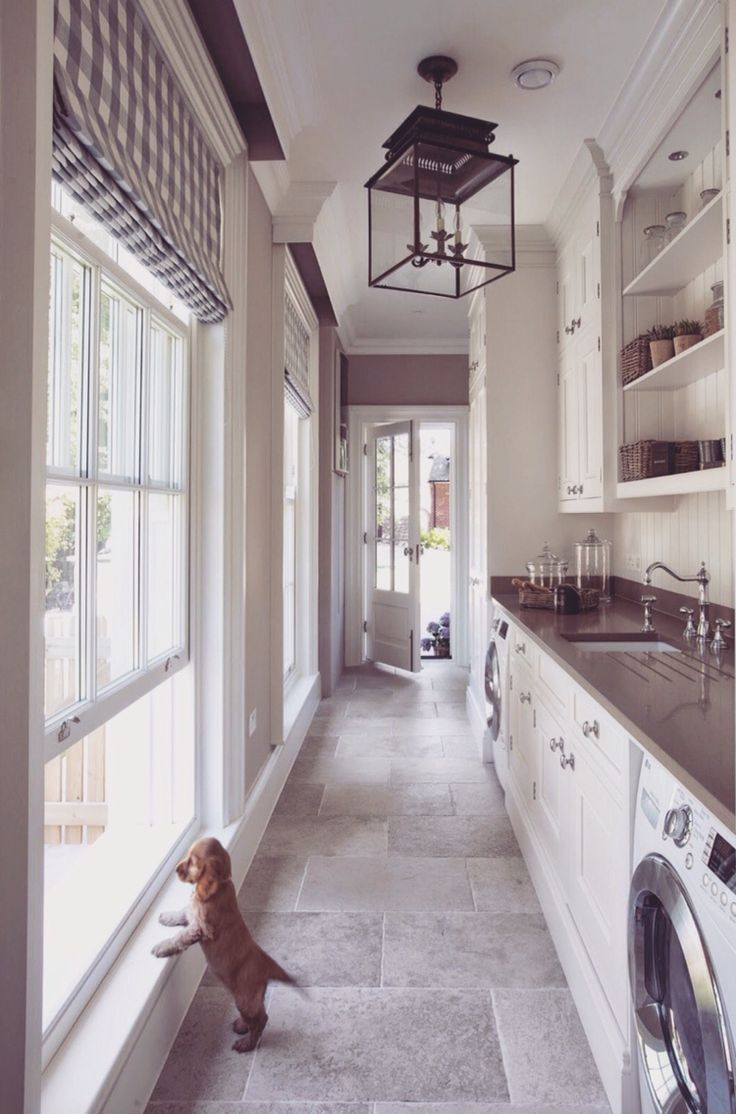 i don't know what I like more, the design of the space or the dog!