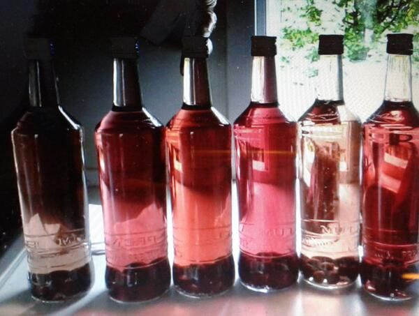 6 flasker slåen snaps, alle fra samme dag, farven til tros!