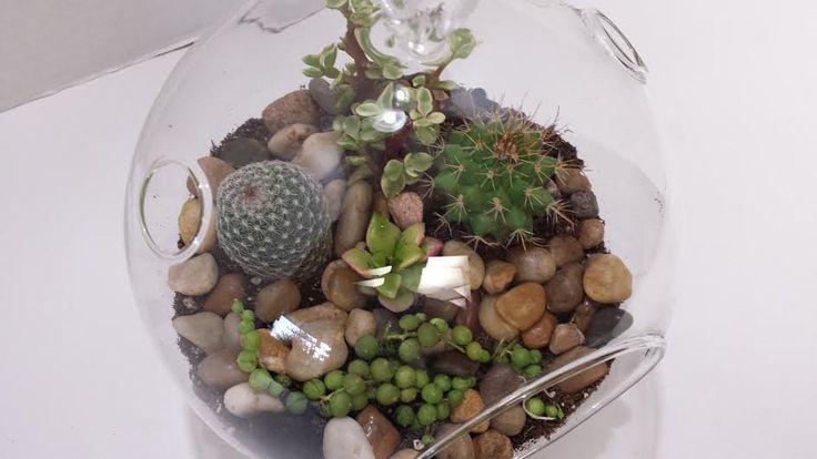 Glass Globe Cactus Terrarium DIY