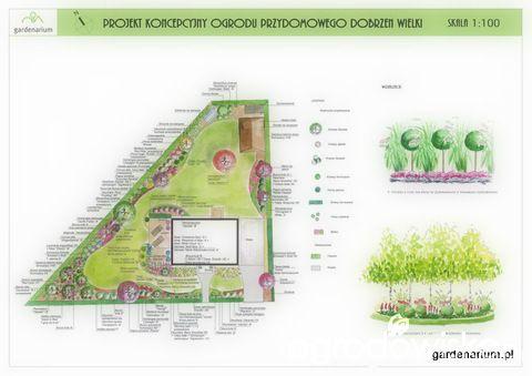W basiowie - kiedyś tu będzie ogród... - Forum ogrodnicze - Ogrodowisko