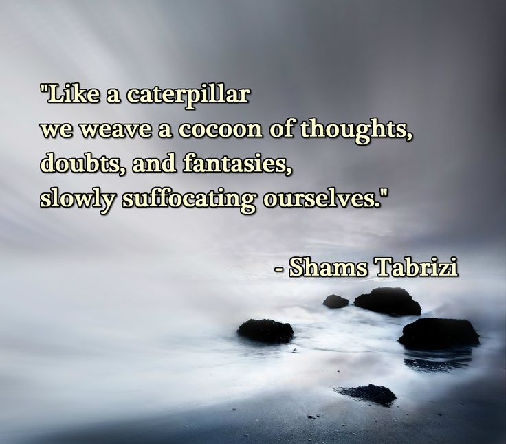 """Like a caterpillar we weave a cocoon of thoughts, doubts, and fantasies, slowly suffocating ourselves.""  – Shams Tabrizi"
