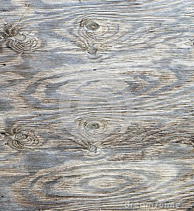 A weathered piece of wood with a textured surface featuring knots in the wood grain.