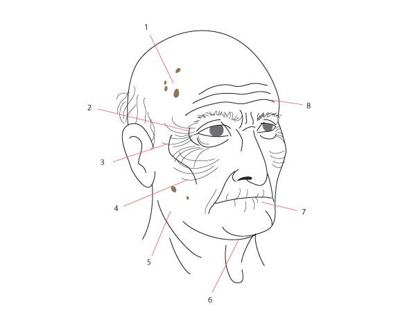 What You'll Be CreatingThroughout these lessons I have touched upon how age changes things in the body and particularly in the face. Here we will look at the full progression of the body and face...
