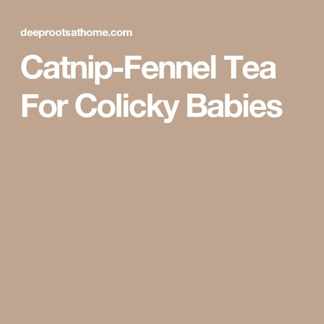 Catnip-Fennel Tea For Colicky Babies