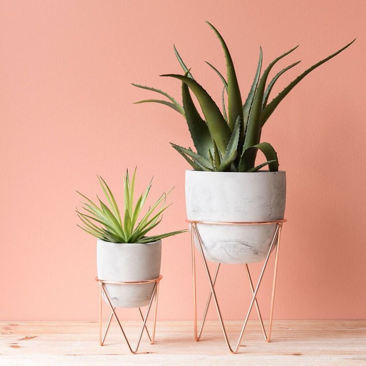 "639 Likes, 25 Comments - Maisons du Monde UK (@maisonsdumondeuk) on Instagram: ""Little and large. Pick up a planter as the perfect plant lover present #myMdM"""