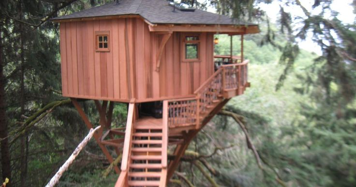 treehouse masters treehouses - Yahoo Image Search Results