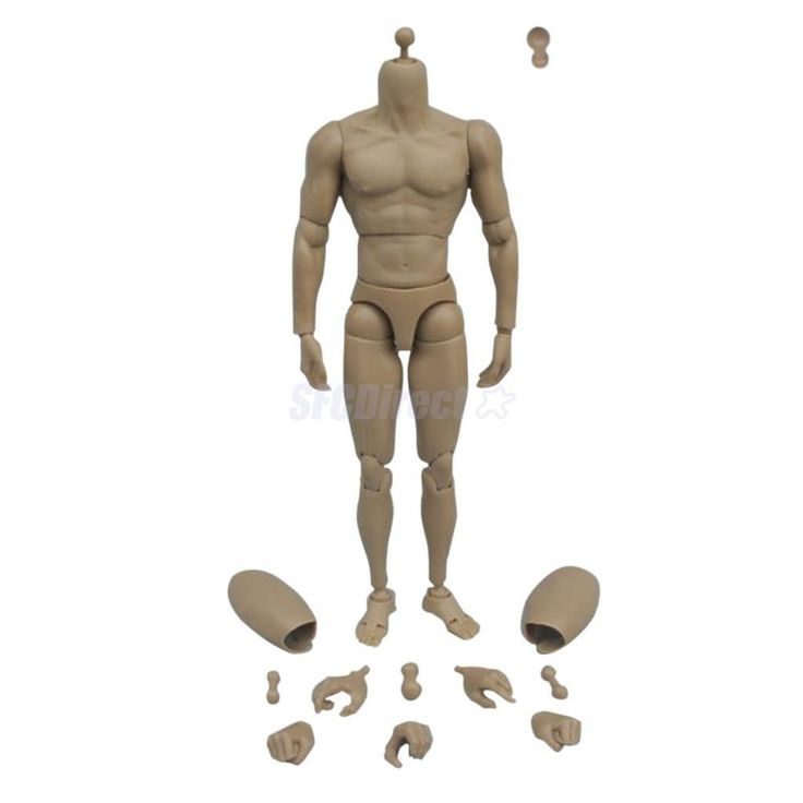 NUDE Muscular Muscle 1:6 Scale Action Figure Body Male Toys fit TTM19 HeadPlay #