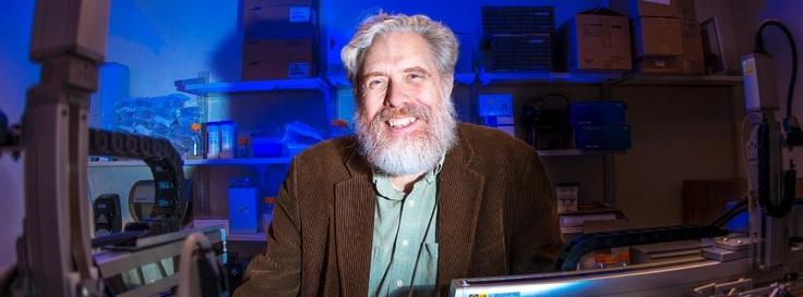 Scientist seeks 'adventurous female' to give birth to Neanderthal