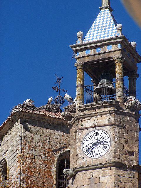 Cigüeñas en la iglesia de San Martín. En esta iglesia se hicieron enterrar varios miembros de la nobleza de Trujillo.