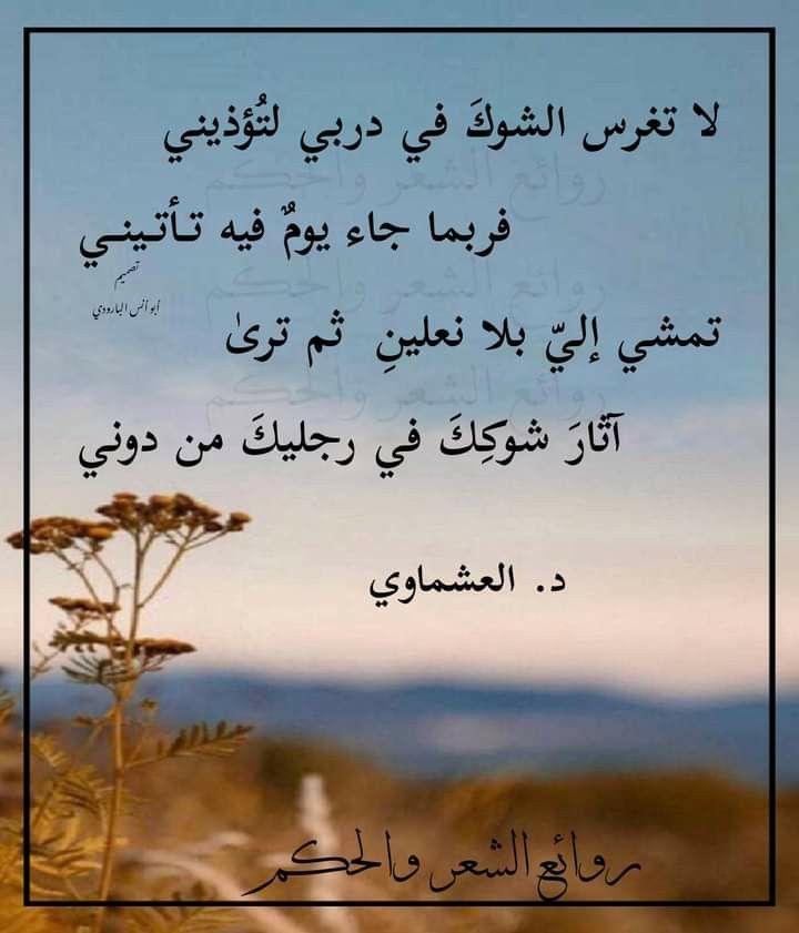 Pin By Muslih Ibrahim On Life Words Of Wisdom Wisdom Life