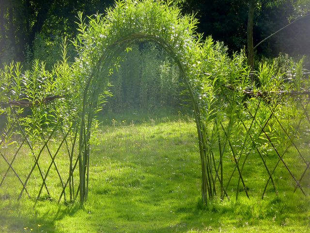 living willow arch and fencing by willowpool, via Flickr