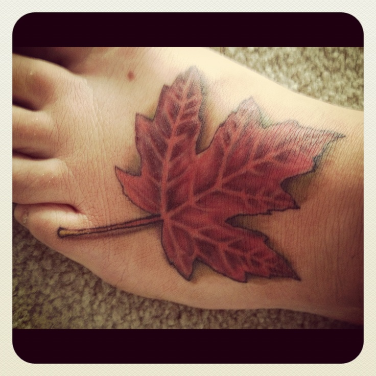 This is perfect for you sara, it's Canada tattoos (; @Gooey McGee
