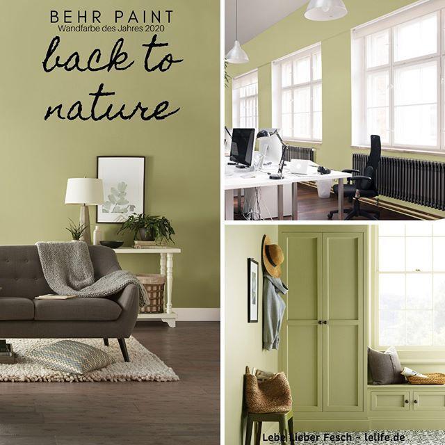 Behr Paints Wandfarbe Des Jahres 2020 Back To Nature Volle Konzentration Auf Eine Dezente Farbe Der Sanfte Grunton Sieht Aus Wie Direk In 2020 Home Decor Decor Home