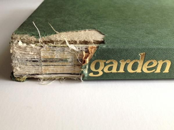 Not a great book spine but the dog liked it  #bookspines   via @DinaGoodDesign