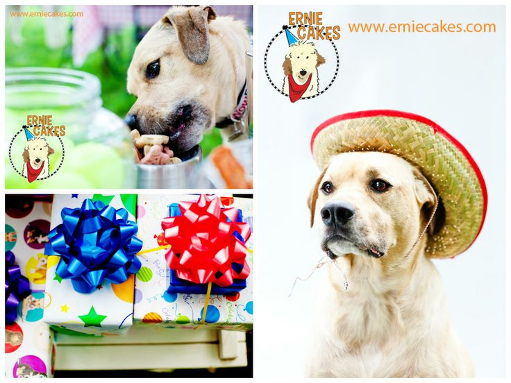 "Take photos at your dog birthday party and put them in an easy photo collage maker online! This is a cute ""thank you"" gift to your dog birthday party guests."