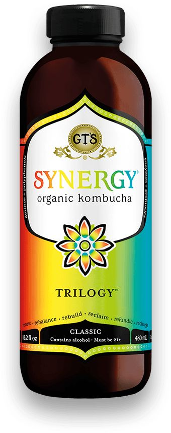 Trilogy™ - What is the difference between the Kombucha and the Synergy? The GT Dave's Kombucha is 100% organic raw kombucha and GT's Synergy is 95% organic raw kombucha with 5% real fruit juice for flavoring.