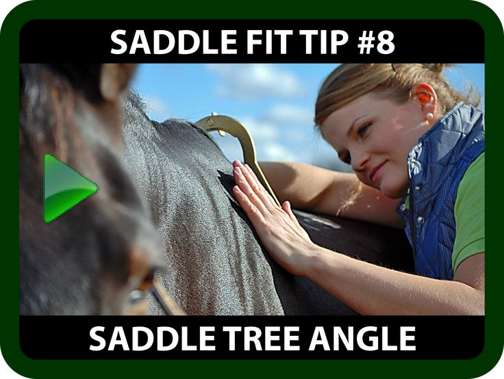 Schleese Saddle Fit Tip #8 Saddle Tree Angle  Did you know...  Saddle Trees come in either:  Narrow, Medium or Wide?  Ask yourself...  Did you know that those designations refer both to the width of the tree and the angle of the tree?  Whether you answered yes or no, Schleese is offering you further information on the importance of the proper tree angle to prevent long-term damage to your horse.   https://youtu.be/7SUosZrxMYY?list=PLA35A02DBF310BB9D