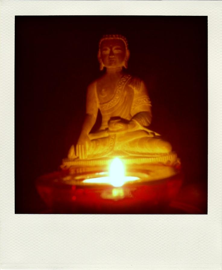 Mi Buda