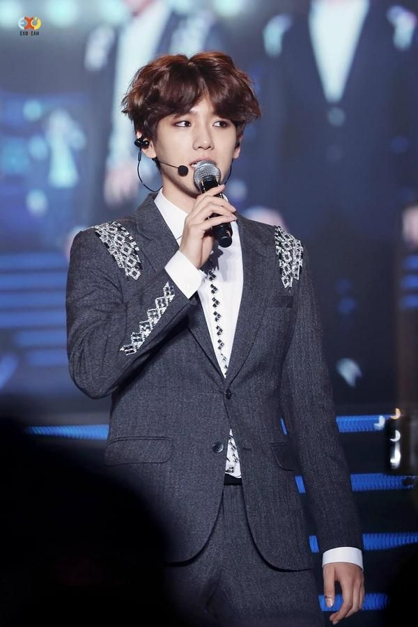 EXO Baekhyun in LDF Family Concert 19th