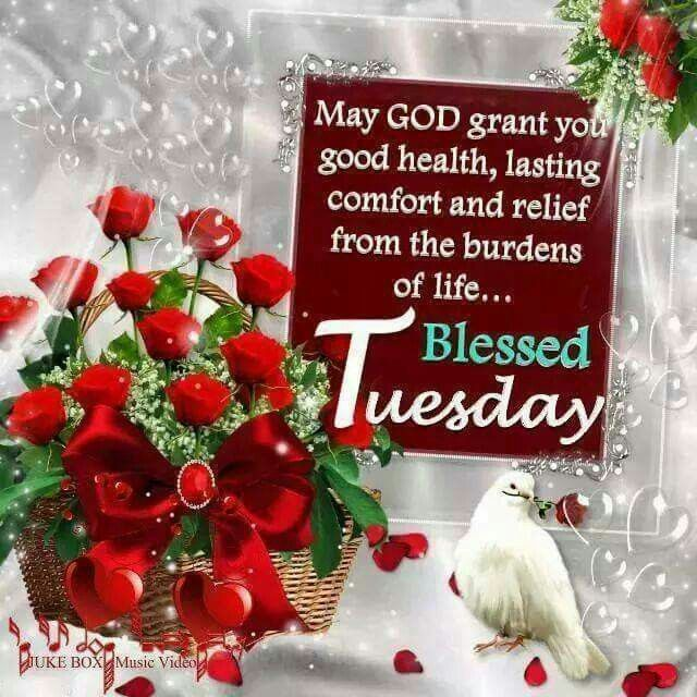 Blessed Tuesday day good morning tuesday tuesday quotes tuesday blessings tuesday images good morning tuesday tuesday quote images